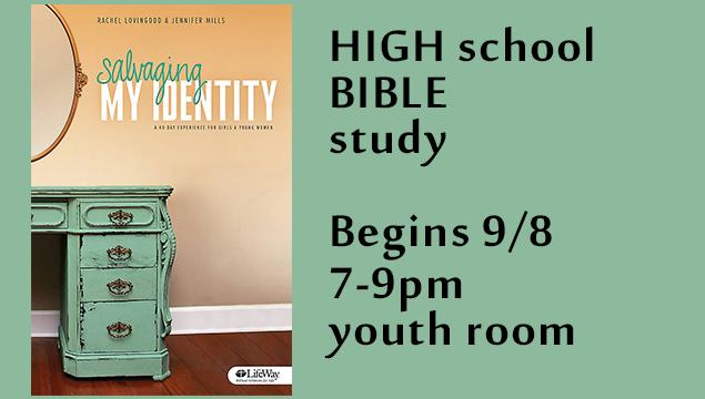 High School Bible Student